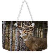 Deer Pictures 508 Weekender Tote Bag