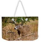 Deer Pictures 525 Weekender Tote Bag