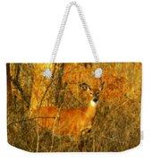 Deer Spotted In A Golden Glowing Field  Weekender Tote Bag