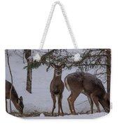 Deer With A Leg Up Weekender Tote Bag