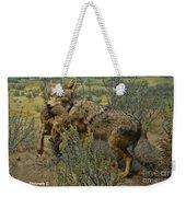 Desert Coyote Weekender Tote Bag