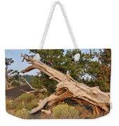 Desert Creation Weekender Tote Bag