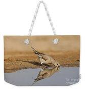 Desert Finch Carduelis Obsoleta Weekender Tote Bag