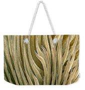 Desert Green Weekender Tote Bag by Ben and Raisa Gertsberg