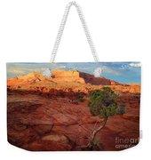 Desert Juniper Weekender Tote Bag by Inge Johnsson