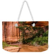 Desert Oasis - Coyote Gulch - Utah Weekender Tote Bag
