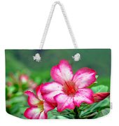 Desert Rose At Kualoa Weekender Tote Bag