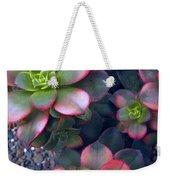 Desert Succulents Weekender Tote Bag
