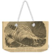 Detstruction Of Minots Ledge Lighthouse Weekender Tote Bag