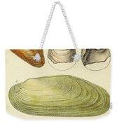 Devonian Fossils, Illustration Weekender Tote Bag