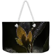 Dew Drops And Crystals Weekender Tote Bag