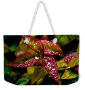 Dew On Autumn Leaves Weekender Tote Bag