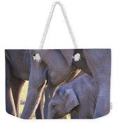 Dhikala Elephants Weekender Tote Bag