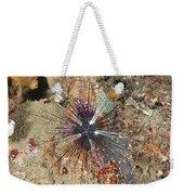 Diadema Urchin Weekender Tote Bag