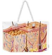 Diagram Showing Anatomy Of Human Skin Weekender Tote Bag