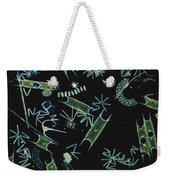 Diatoms And Dinoflagellates Weekender Tote Bag by D P Wilson