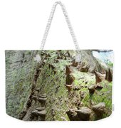 Difficult Climb Weekender Tote Bag