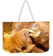 Digging For Gold Weekender Tote Bag