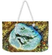 Dinosaur Hatch At Pismo Beach California Weekender Tote Bag