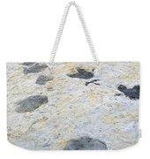 Dinosaur Tracks Weekender Tote Bag