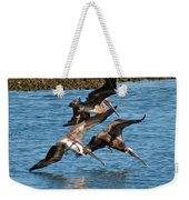 Diving Pelicans Weekender Tote Bag