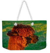 Do You Like My New Haircut Alpaca Weekender Tote Bag