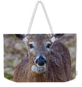 Doe Portrait Weekender Tote Bag