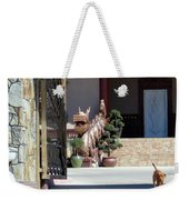 Dog At Temple Weekender Tote Bag