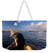 Dog In A Dingy At Put-in-bay Harbor Weekender Tote Bag