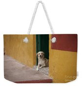 Dog In Colorful Mexican City Weekender Tote Bag