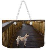 Shiba Inu On Path Weekender Tote Bag