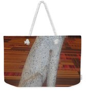 Dog Pet Man's Best Friend Weekender Tote Bag by Navin Joshi