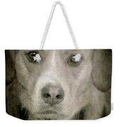 Dog Posing Weekender Tote Bag