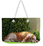 Dog Relaxing Weekender Tote Bag