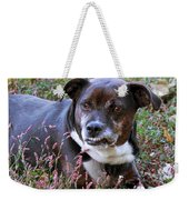 Dogg Weekender Tote Bag