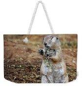 Doggie Snack Weekender Tote Bag