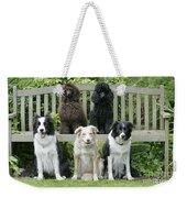 Dogs Sitting On Bench Weekender Tote Bag