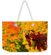Dogwood And Fall Colors Weekender Tote Bag