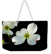 Dogwood Blossoms Painted For Jerry Weekender Tote Bag