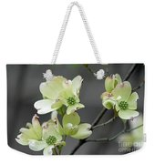 Dogwood In Bloom Weekender Tote Bag
