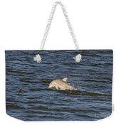 Dolphin At Sea Weekender Tote Bag