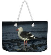 Dolphin Gull Weekender Tote Bag