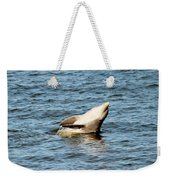 Dolphin Playing Weekender Tote Bag