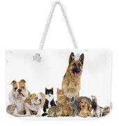 Domestic Mammal Pets Weekender Tote Bag