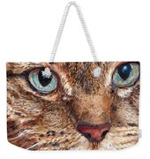 Domestic Tabby Cat Weekender Tote Bag