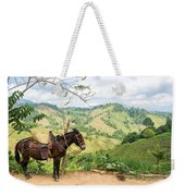 Donkey And Hills Weekender Tote Bag