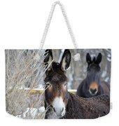 Donkey And The Mule Weekender Tote Bag