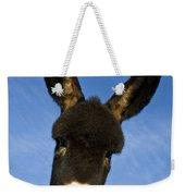 Donkey Foal Weekender Tote Bag