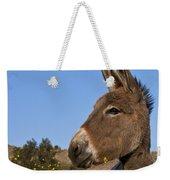 Donkey In Greece Weekender Tote Bag
