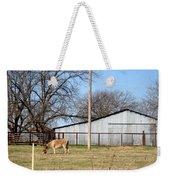 Donkey Lebanon In Oklahoma Weekender Tote Bag
